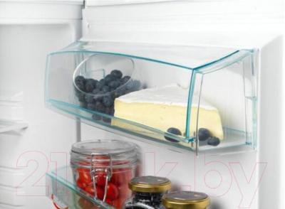 Холодильник с морозильником Snaige RF57SM-S5JJ2F