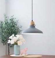 Потолочный светильник Home Light Астерия A039-2 (серый) -