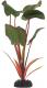Декорация для аквариума Barbus Эхинодорус Бархатный / Plant 043/30  -