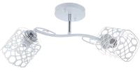 Потолочный светильник Aitin-Pro НПБ C1403/2 -