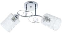 Потолочный светильник Aitin-Pro НПБ XA1162/2 (хром) -