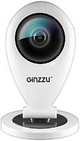 IP-камера Ginzzu HWD-1031X -