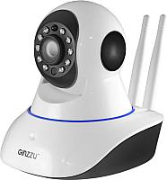 IP-камера Ginzzu HWD-2032A -