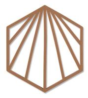 Подставка под горячее Zone Trivet Shell Ракушка / 331985 (корица) -