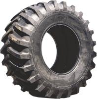 Грузовая шина Tianli AgMaster 18.4-38 149A8 нс10 TL -