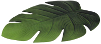 Подставка под горячее Tognana Serving Leaf Лист / PM95082TV06 (зеленый) -