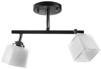 Потолочный светильник Aitin-Pro НПБ N3502/2 -