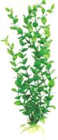 Декорация для аквариума Barbus Бакопа / Plant 010/50 (зеленый) -