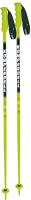 Горнолыжные палки Komperdell Racing Nationalteam / 1344201-48 (р.125) -