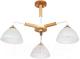 Люстра Arte Lamp Matthew A5032PL-3BR -