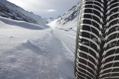 Зимняя шина Goodyear Ultra Grip Ice+ 205/55R16 91T