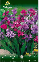Семена цветов АПД Бабиана смесь / A30926 (10шт) -