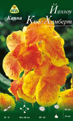 Семена цветов АПД Канна Йеллоу Кинг Хамберт / A30301