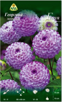 Семена цветов АПД Георгина Генуя / A30067 -