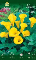 Семена цветов АПД Калла Блек Мейджик / A30288 -