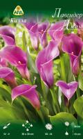 Семена цветов АПД Калла Лавендер Джем / A30290 -