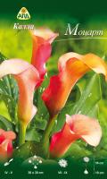 Семена цветов АПД Калла Моцарт / A30293 -