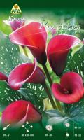 Семена цветов АПД Калла Ред Алерт / A31022 -