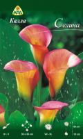 Семена цветов АПД Калла Селина / A30989 -