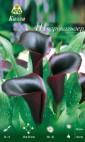 Семена цветов АПД Калла Шварцвальдер / A30295 -
