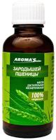 Масло косметическое Aroma Saules Растительное Зародышей пшеницы (30мл) -