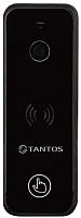 Вызывная панель Tantos iPanel 2+ (черный) -