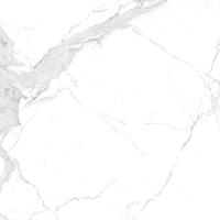 Плитка Allore Avenzo Silver F P R Full Lappato 1 (595x595) -
