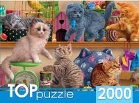 Пазл РЫЖИЙ КОТ Смешные котята в зоомагазине / ХТП2000-1596 (2000эл) -