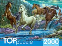 Пазл РЫЖИЙ КОТ Ночной табун лошадей / ХТП2000-1594 (2000эл) -