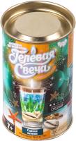 Набор для изготовления свечей Danko Toys Гелевая свеча / GS-01-03 -
