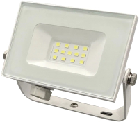 Прожектор Truenergy 10W 6500K 13110 -