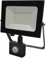 Прожектор Truenergy 30W 6500K 13203 -