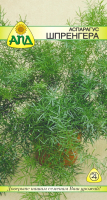 Семена цветов АПД Аспарагус Шпренгера / A20014 -