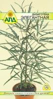 Семена цветов АПД Дизиготека элегантная / A20147 -