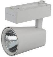 Трековый светильник ЭРА TR4-20 WH / Б0032113 (белый) -