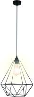 Потолочный светильник Apeyron Electrics Рагно 60Вт 220В / 14-36 (черный) -