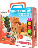 Конструктор Brickmaster Крепость 2 в 1 / 205 (119эл) -