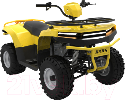 Квадроцикл Irbis Motors ATV 125