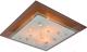 Потолочный светильник Arte Lamp Tiana A4042PL-3CC -