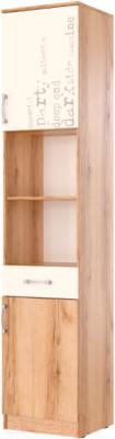 Шкаф-пенал SV-мебель Рио 1 Д фотопечать