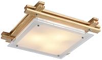 Потолочный светильник Arte Lamp Archimede A6460PL-3BR -