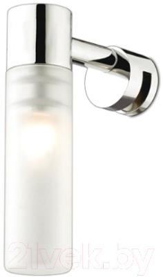 Фото - Подсветка для картин и зеркал Odeon Light 2447/1 подсветка для картин odeon 4180 9wl