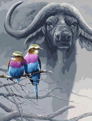 Картина по номерам PaintBoy Колибри / GX4543