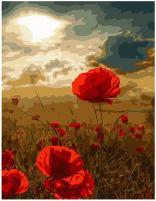 Картина по номерам PaintBoy Маковое поле / EX6138 картина по номерам flamingo маковое поле 3991234 40 х 50 см