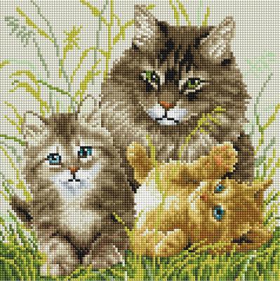 Набор алмазной вышивки PaintBoy Кошачья семья / DF401