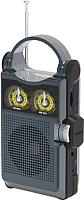 Радиоприемник Ritmix RPR-333 (черный) -