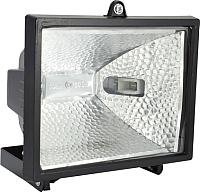 Прожектор ETP RFG-001 500W / 33502 (черный) -