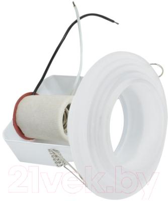 Точечный светильник ETP R 50G (белый)