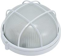 Светильник ЖКХ ETP НПП 6001S / HPL001S 220V-60W (белый) -