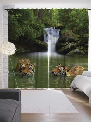 Шторы JoyArty Тигры прохлаждаются / p_12732